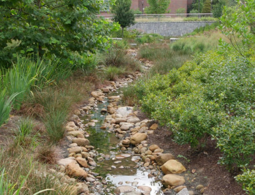 Green Infrastructure in Practice