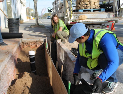 Curbside planters aim to combat stormwater runoff